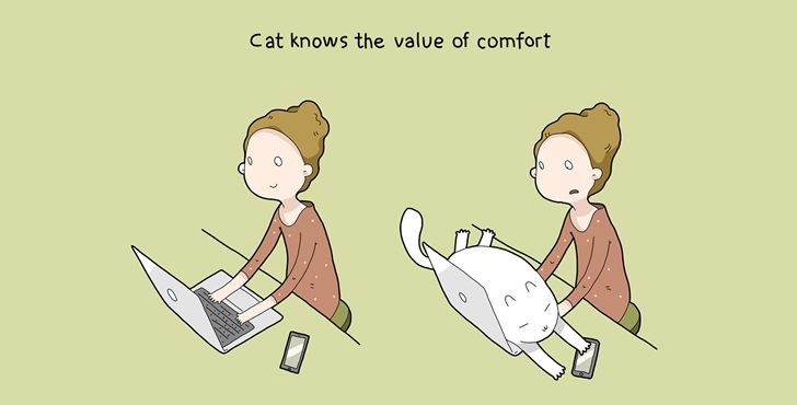 beneficios tener gato-007