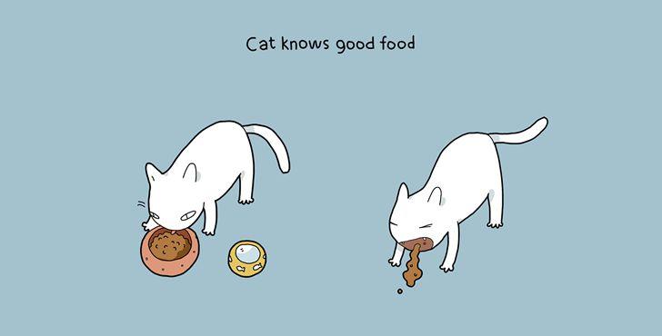 beneficios tener gato-008