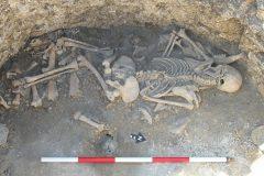 Animales híbridos de la Edad de Hierro descubiertos en Gran Bretaña