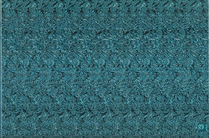 estereogramas magic eye (13)