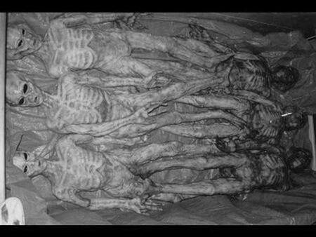 extraterrestres muertos Carolinas 1941