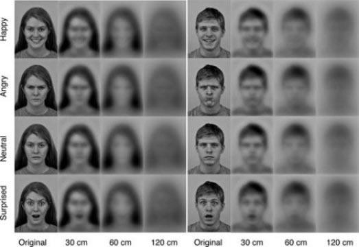formato rostros