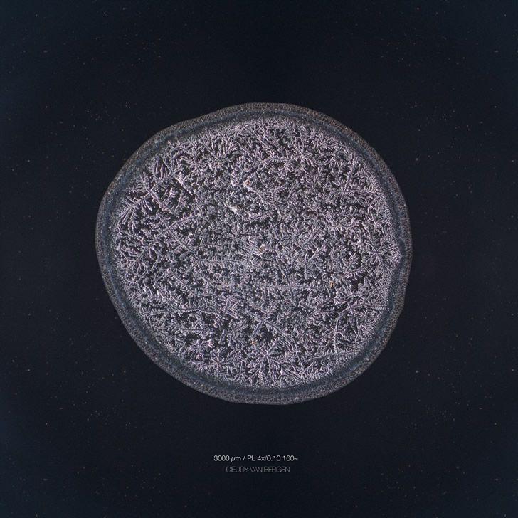 lagrimas microscopio (5)