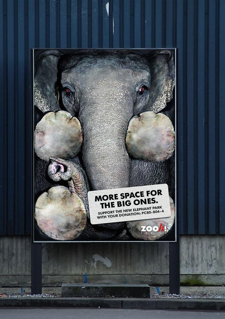 publicidad poderosas animales-12