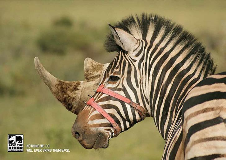 publicidad poderosas animales-14