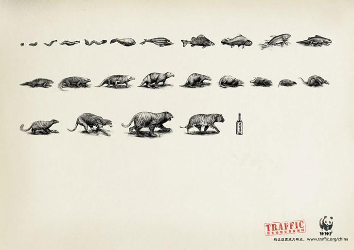publicidad poderosas animales-34