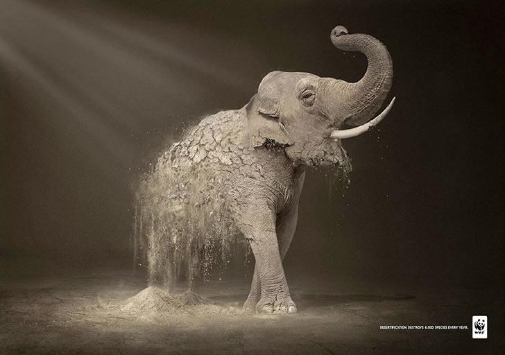 publicidad poderosas animales-39