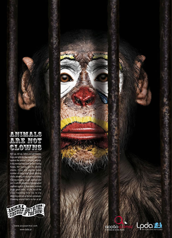 publicidad poderosas animales-4