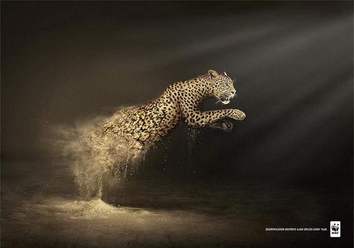 publicidad poderosas animales-40
