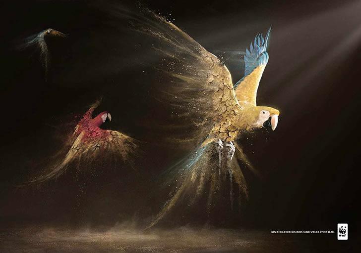publicidad poderosas animales-41