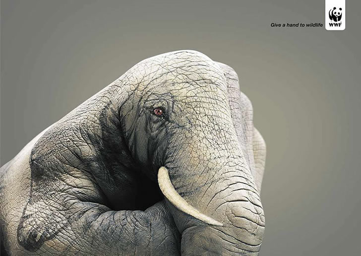 publicidad poderosas animales-43