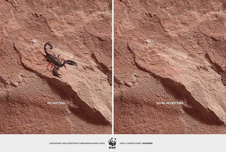 publicidad poderosas animales-8