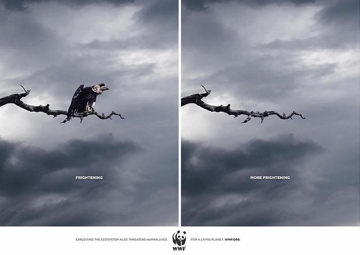 publicidad poderosas animales-9