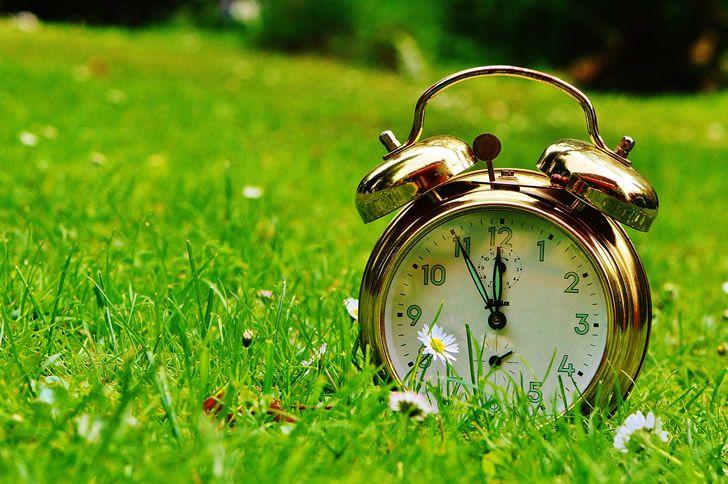 reloj campo