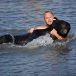 El superhéroe del día: hombre salvó a oso de morir ahogado