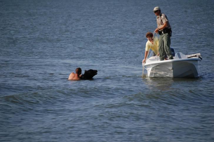 Adam Warwick rescate oso (7)