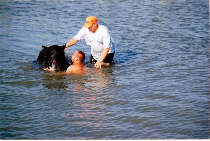 Adam Warwick rescate oso (8)