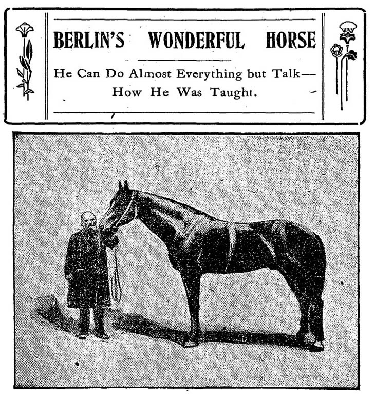 Berlins Wonderful Horse NYT