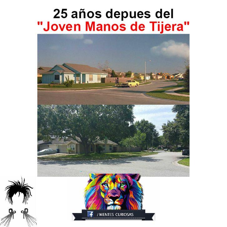 Marcianadas_191_070815 (55)