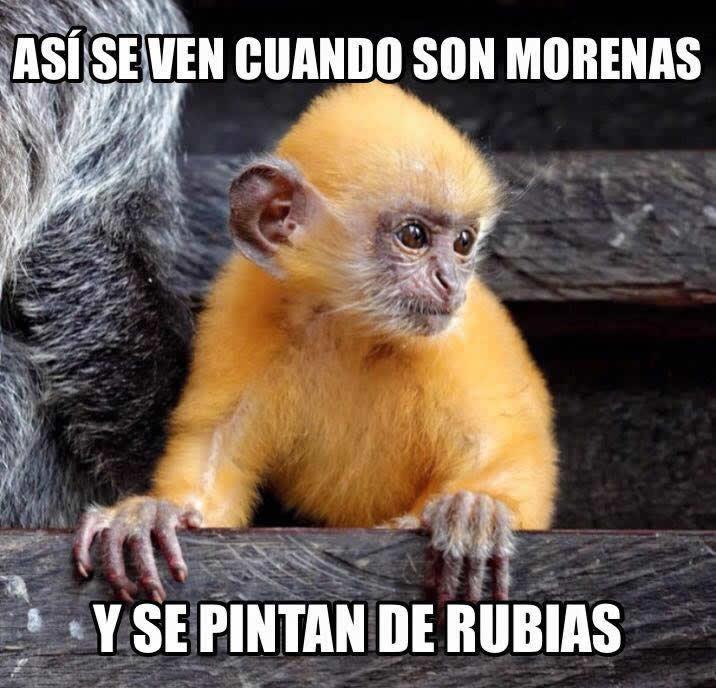 Marcianadas_192_14ago20150958 (256)
