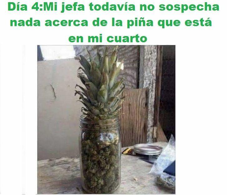 Marcianadas_193_2108150849 (112)