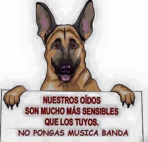 Marcianadas_193_2108150849 (208)