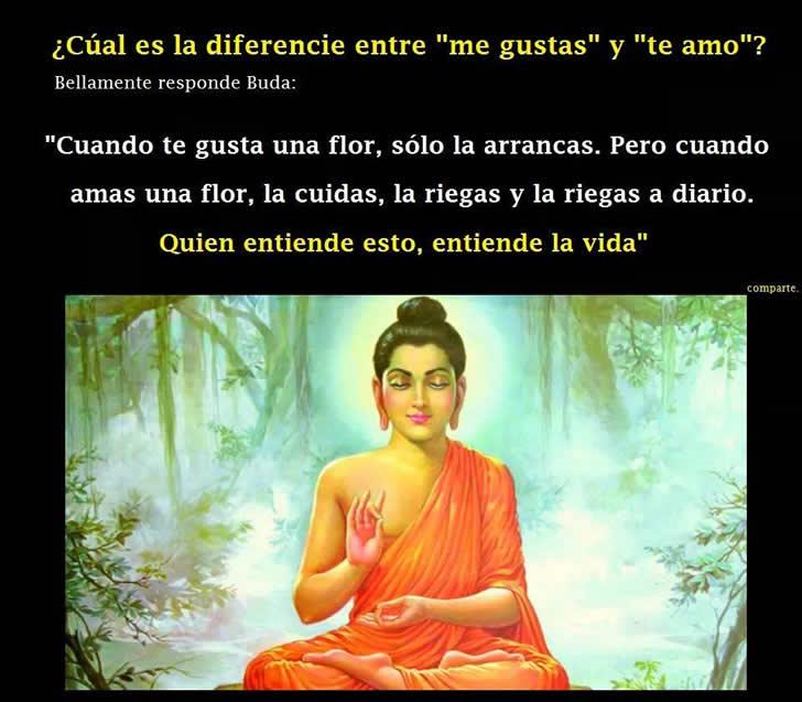 Marcianadas_193_2108150849 (224)