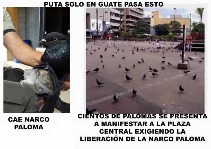 Marcianadas_193_2108150849 (294)