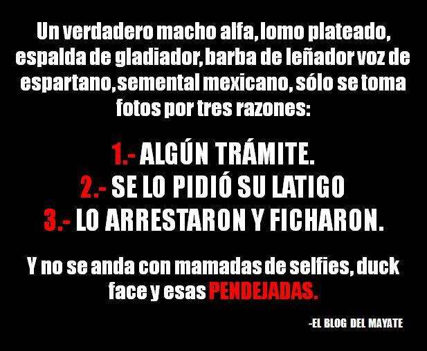 Marcianadas_193_2108150849 (332)