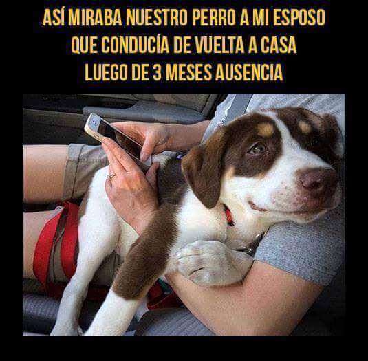Marcianadas_194_222