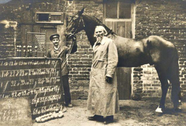Wilhelm Von Osten y Hans el caballo