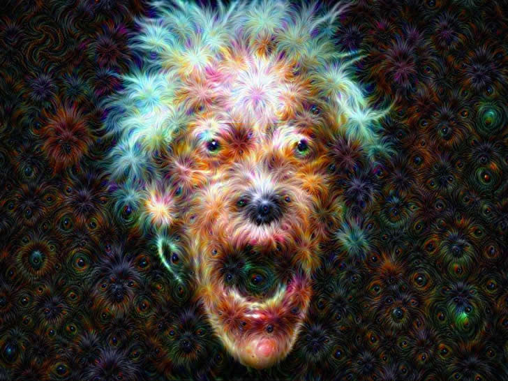 deep dream images (1)