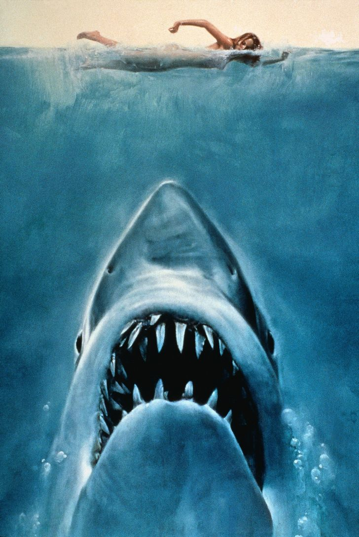 41 - Jaws