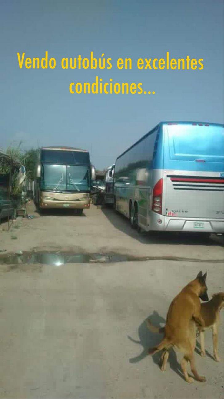 Marcianadas_145_040915_1100 (132)