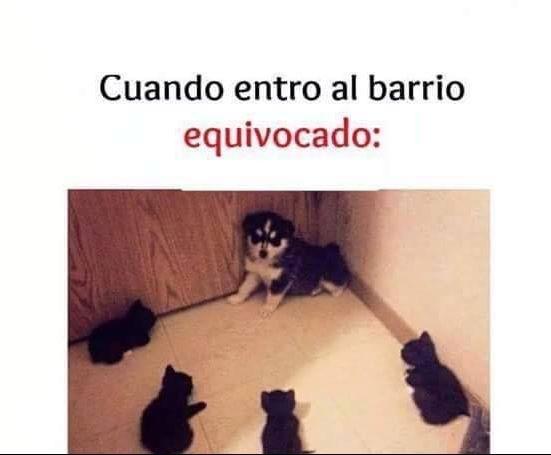 Marcianadas_145_040915_1100 (199)