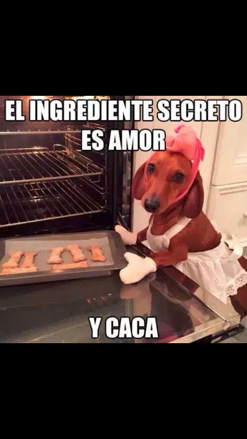 Marcianadas_145_040915_1100 (231)