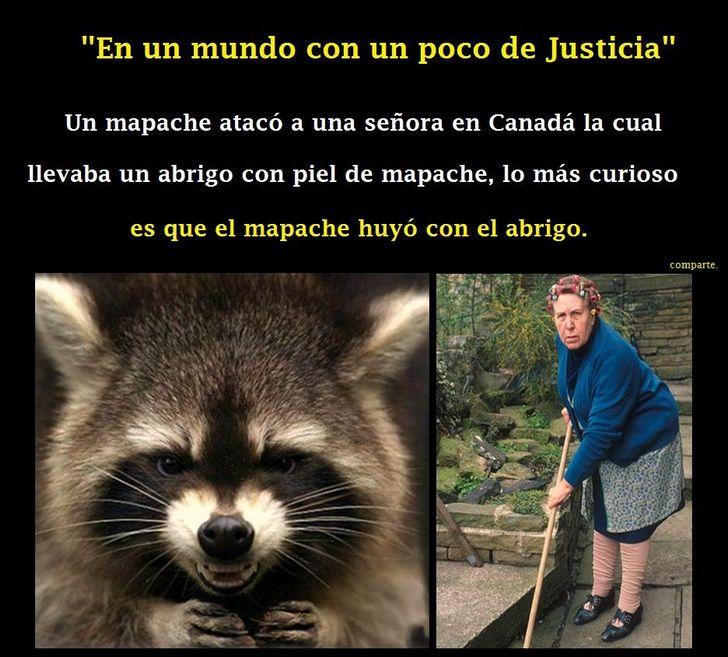 Marcianadas_196_1109150910 (177)