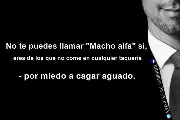 Marcianadas_196_1109150910 (247)