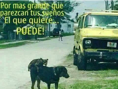 Marcianadas_196_1109150910 (320)