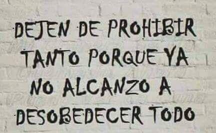 Marcianadas_196_1109150910 (335)