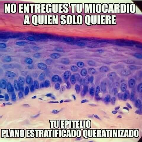 Marcianadas_197_1809150908 (117)
