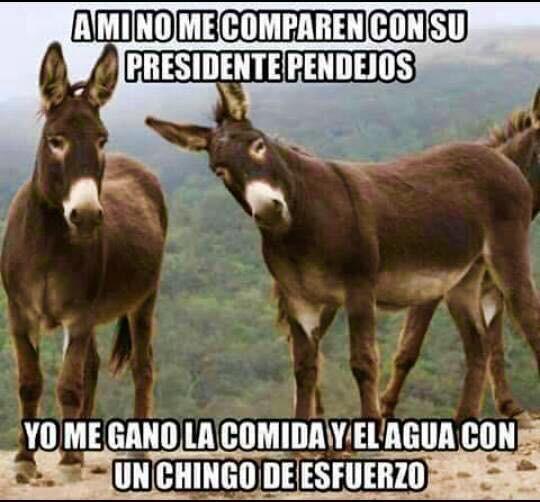 Marcianadas_197_1809150908 (66)