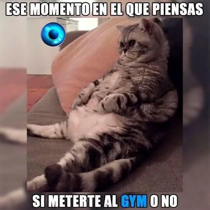 Marcianadas_197_1809150908 (99)
