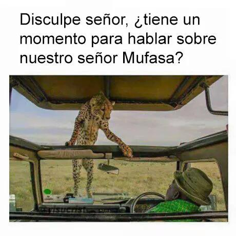 Marcianadas_198_2509150000 (106)