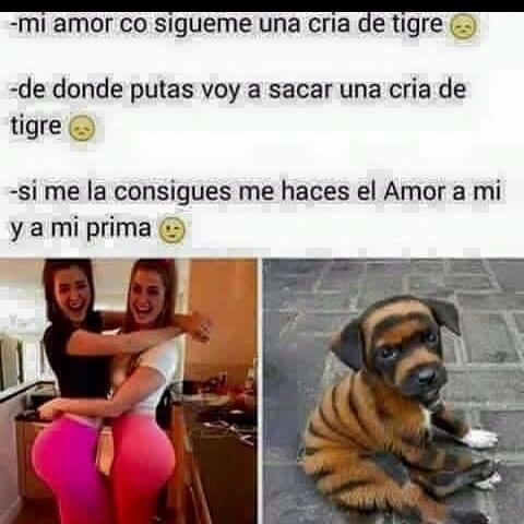 Marcianadas_198_2509150000 (133)