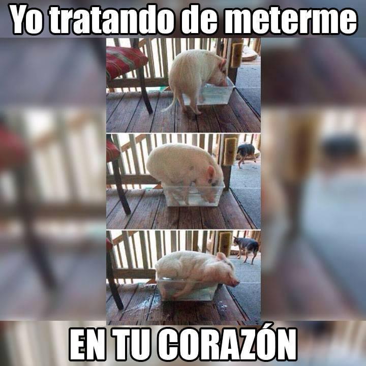 Marcianadas_198_2509150000 (213)