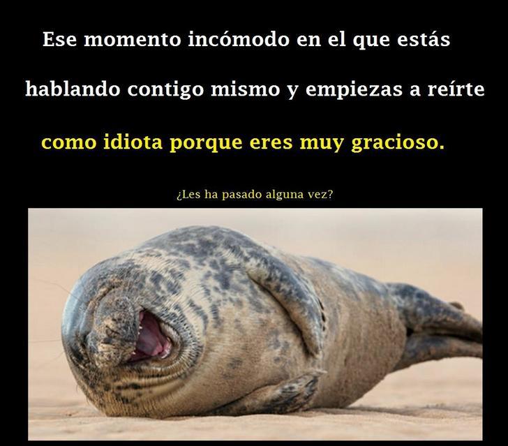Marcianadas_198_2509150000 (23)