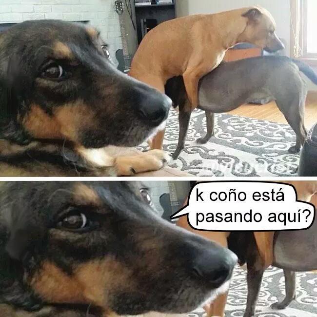 Marcianadas_198_2509150000 (98)