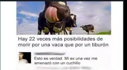 Marcianadas_198_2509150952 (33)
