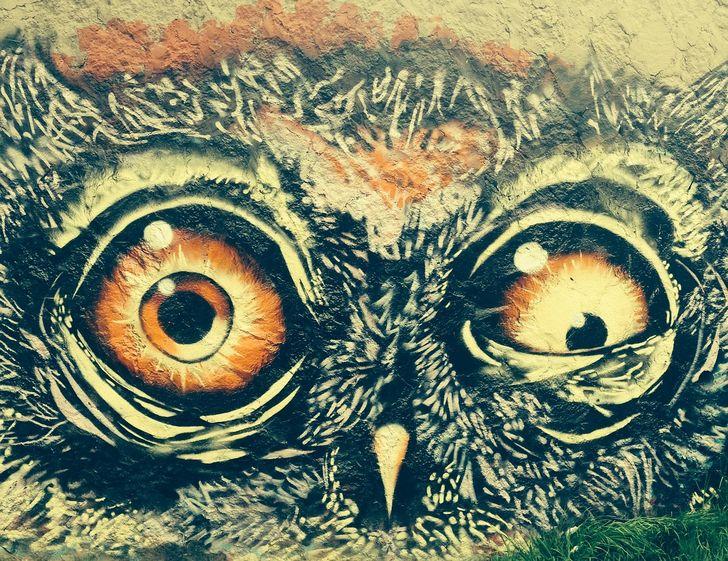buho graffiti